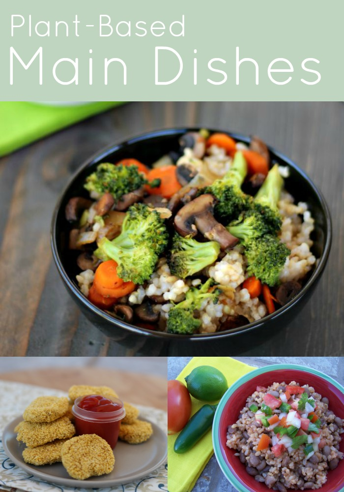 Plant Based Main Dishes