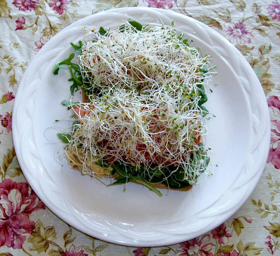 Meal Plan Monday with Teresa of Healthier Living - My Plant