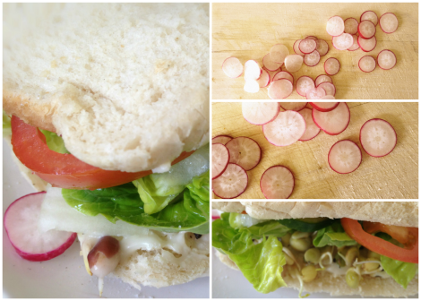 SPROUTED SEED AND RADISH SANDWICH