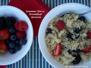 Summer Berry breakfast quinoa HT1