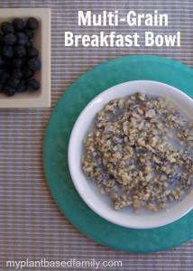 multi-grain breakfast bowl is vegan and gluten free
