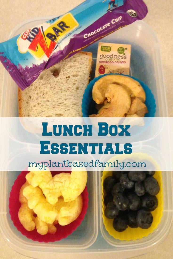 Basic Lunch Box Essentials for elementary kids