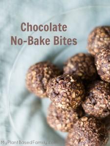 Chocolate No Bake Bites