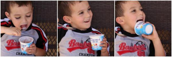 Dream yogurt